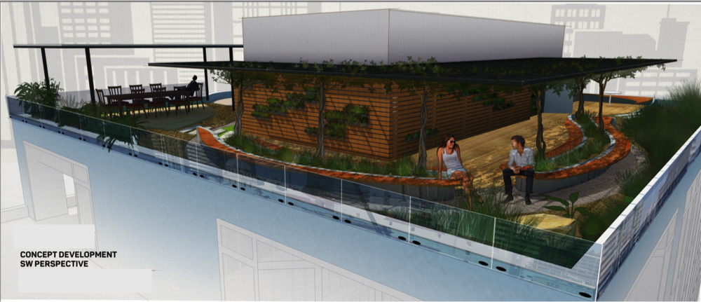 Green roof entertainment area graphic.png