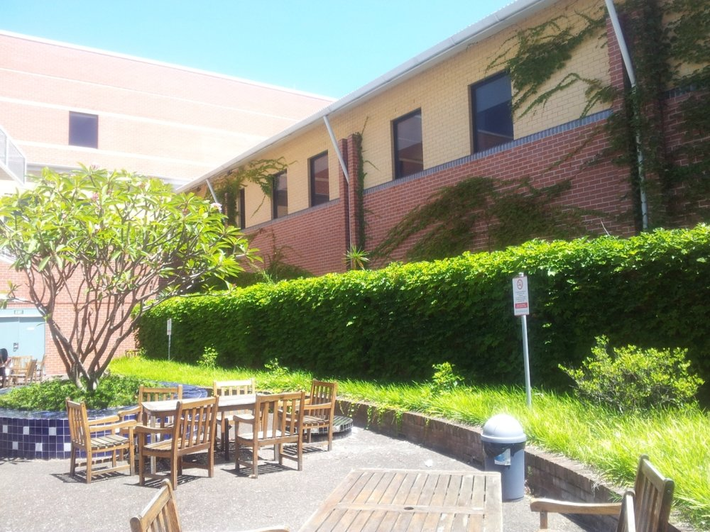 Green roof hospital.jpg