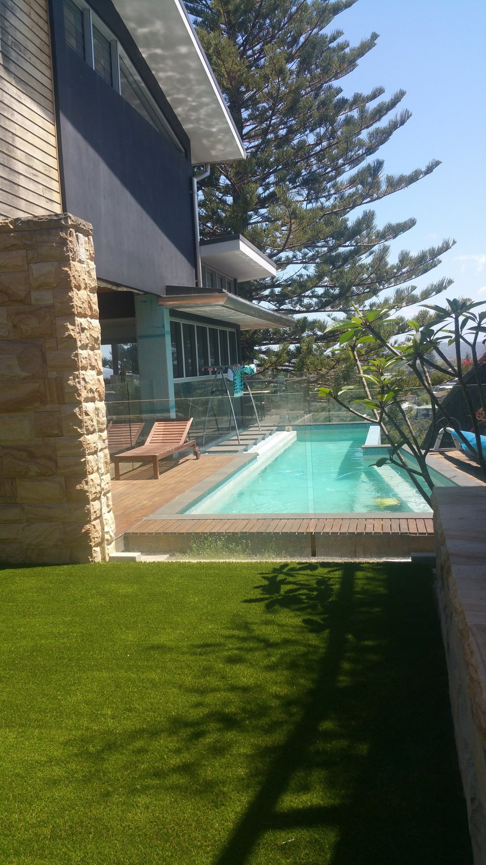 #poolssyntheticgrass#premiumsyntheticgrasssydney#dogs.synthetic.grass#pets#royalgrasssilk35#royal.grass.