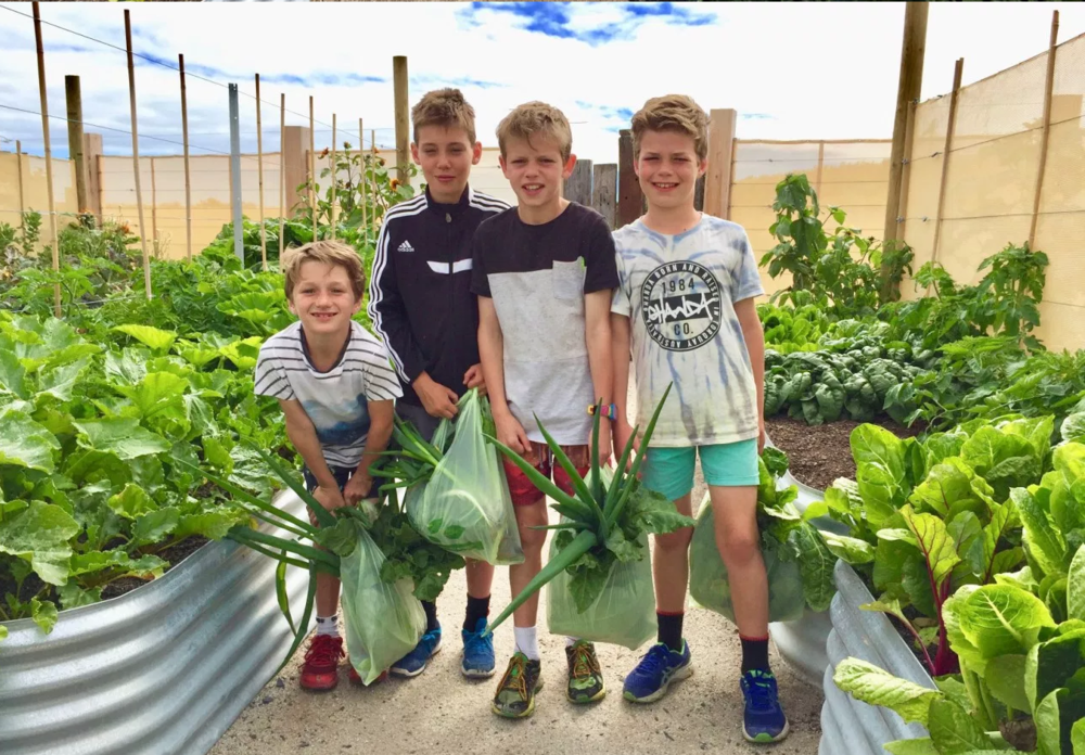 Schools are playing an important part in the future of food and the next generation.