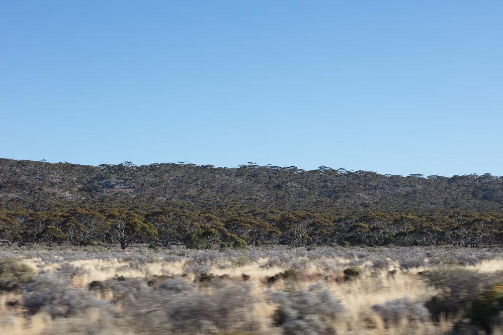 nathan k davis nkd 1nkd photography architectural melbourne australia landsacpe western australia south australia victoria road trip outback wildlife desert nullarbor road travel