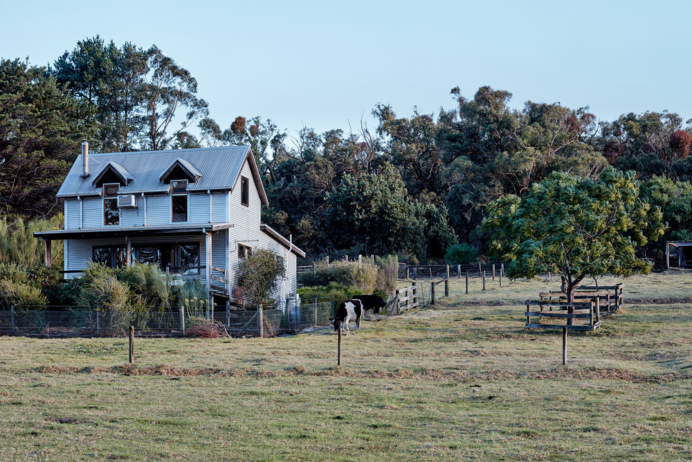 nathan-k-davis-architecture-architectural-photography-interior-exterior-residential-macks-creek-air-bnb-cottage-country-gippsland-3