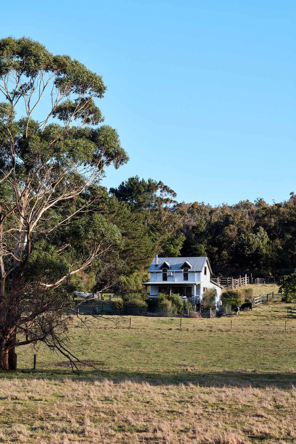 nathan-k-davis-architecture-architectural-photography-interior-exterior-residential-macks-creek-air-bnb-cottage-country-gippsland-9