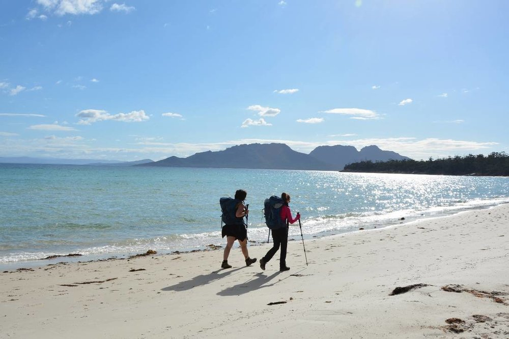 Famed for its ancient forests, pink granite Hazard Mountains, stunning beaches, and plentiful wildlife, the Freycinet Experience Walk along Tasmania's bewitching east coast is one of the 10 Great Walks of Australia. LISA JACKSON