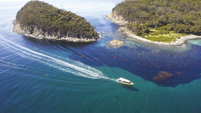 Pennicott Wilderness Journeys, Bruny Island, TAS