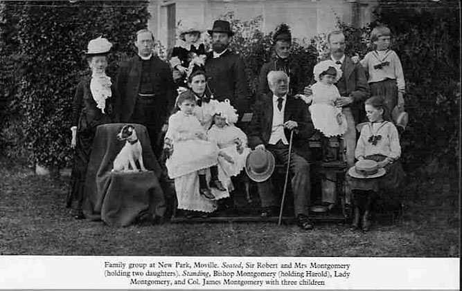 montgomery-family-at-new-park-moville.jpg