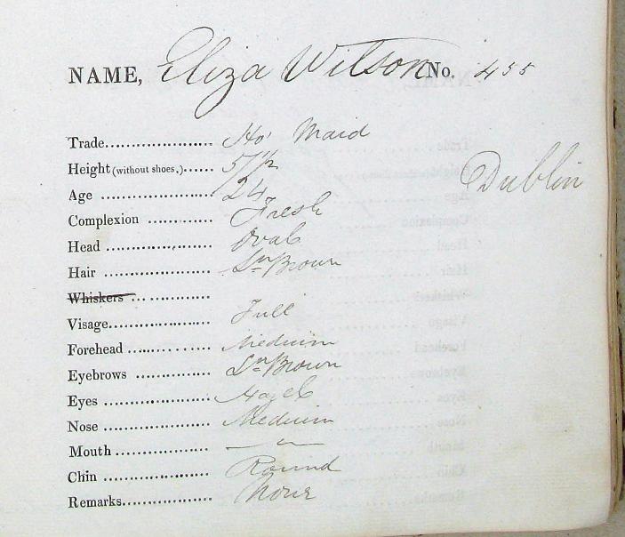 Eliza Wilson T Horne.PNG