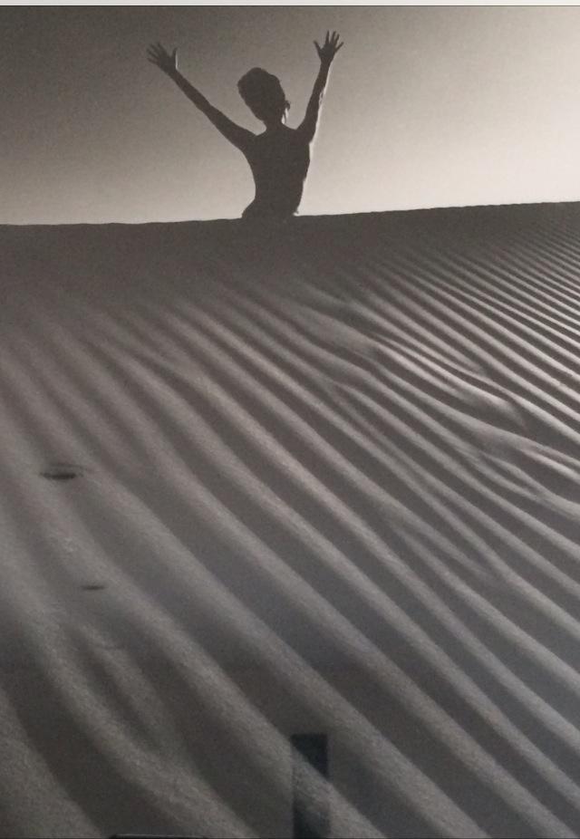 Photographie de Jean Loup Sieff