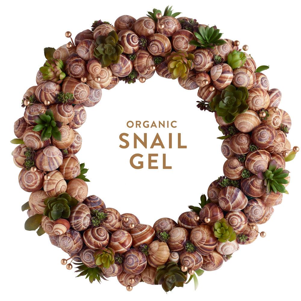 Wreath-Snail.jpg
