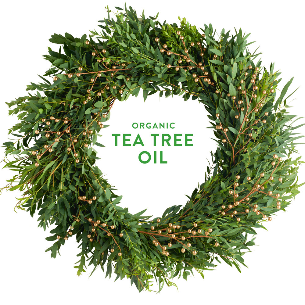 Wreath-TeaTree.jpg