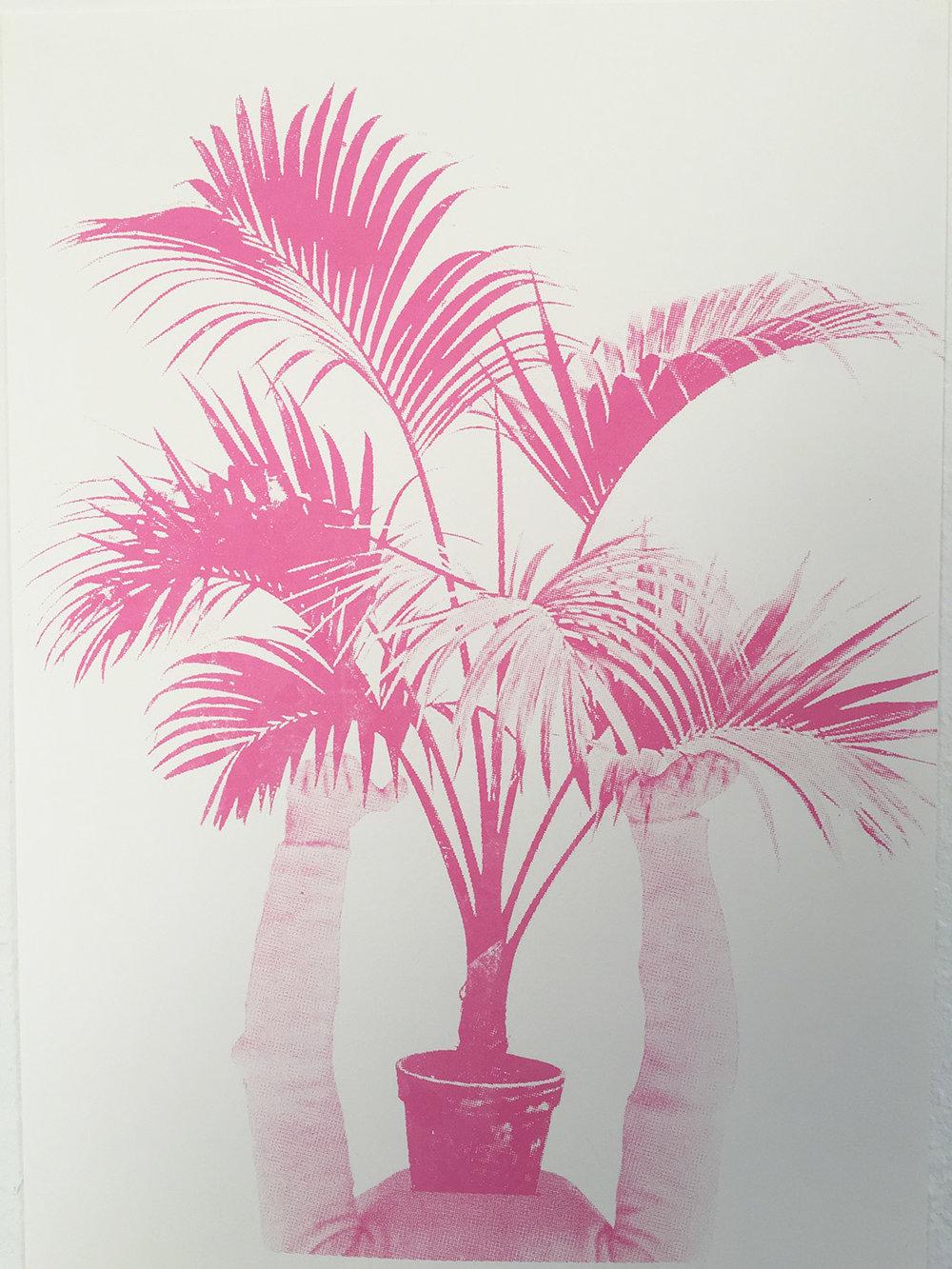 pink_palm_hixxy.jpg