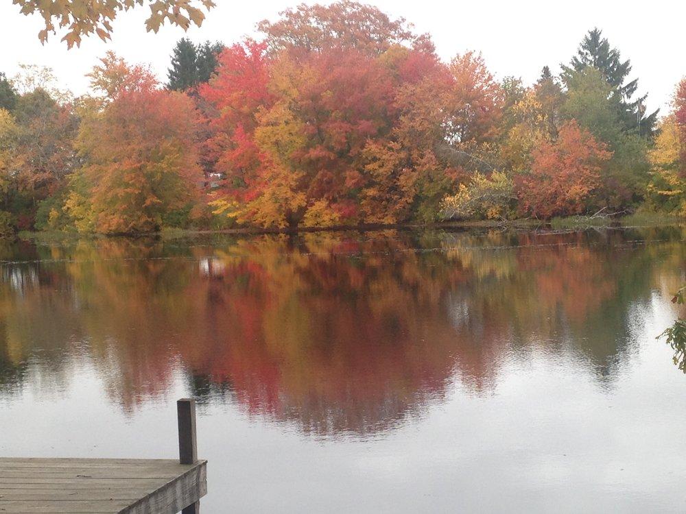 Fall foliage in Rhode Island — Megan Sumeracki
