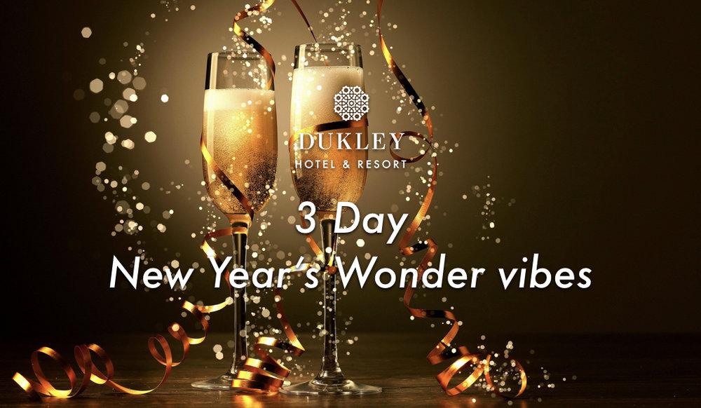3 Day New Year's Wonder vibes.001.jpeg