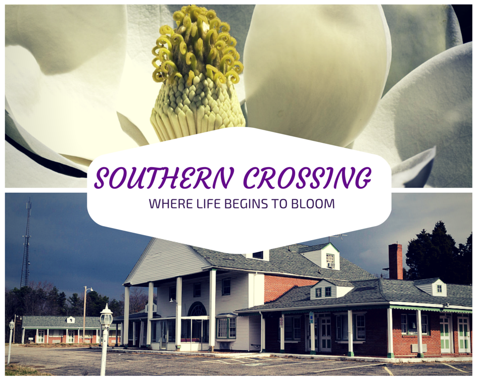 Southern Crossing.png
