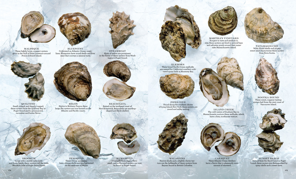 Oysters_L1206WELAFR_5356;313 copy.jpg
