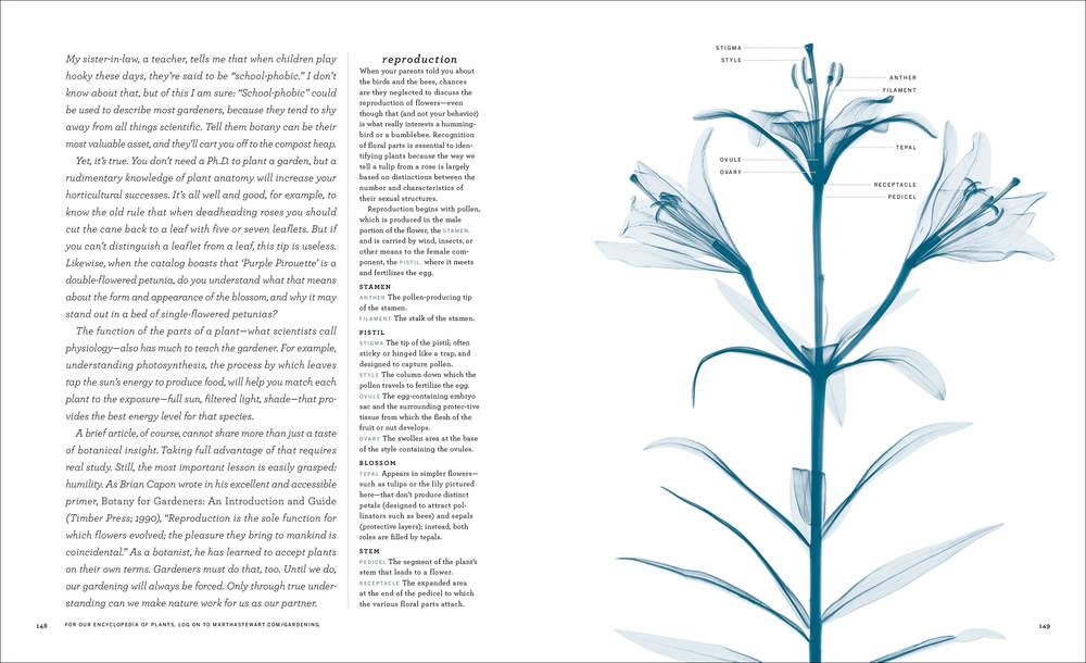2003_03_Botany1012 copy.jpg