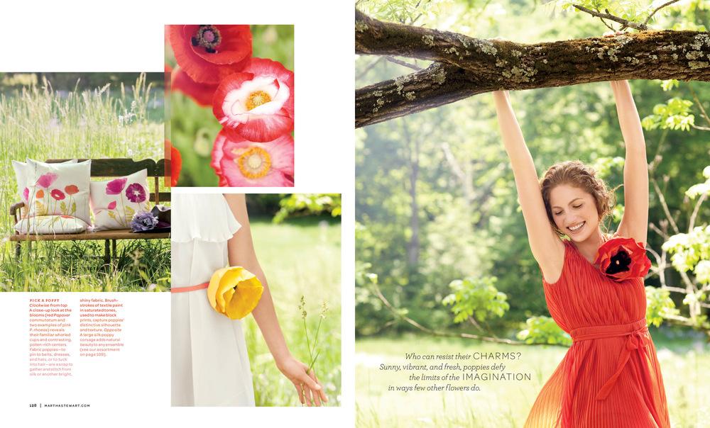 Poppies 2.jpg