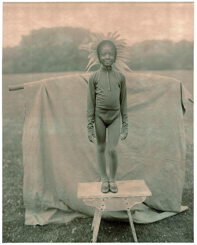 PolaroidSunflower.jpg