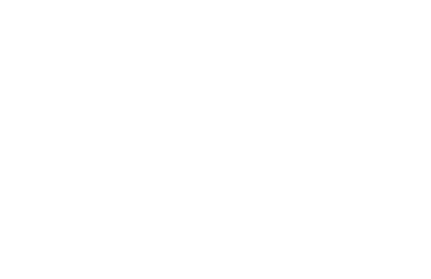 Washington Concert Opera