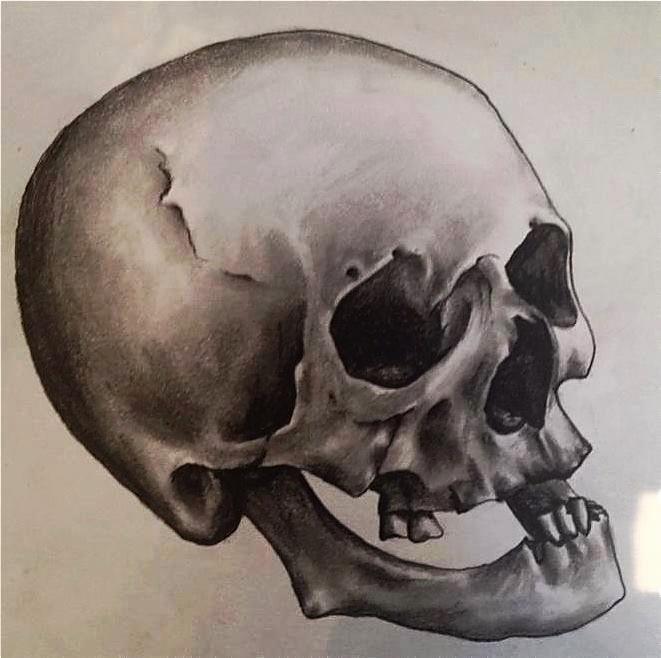 Drawing - Skull.jpg
