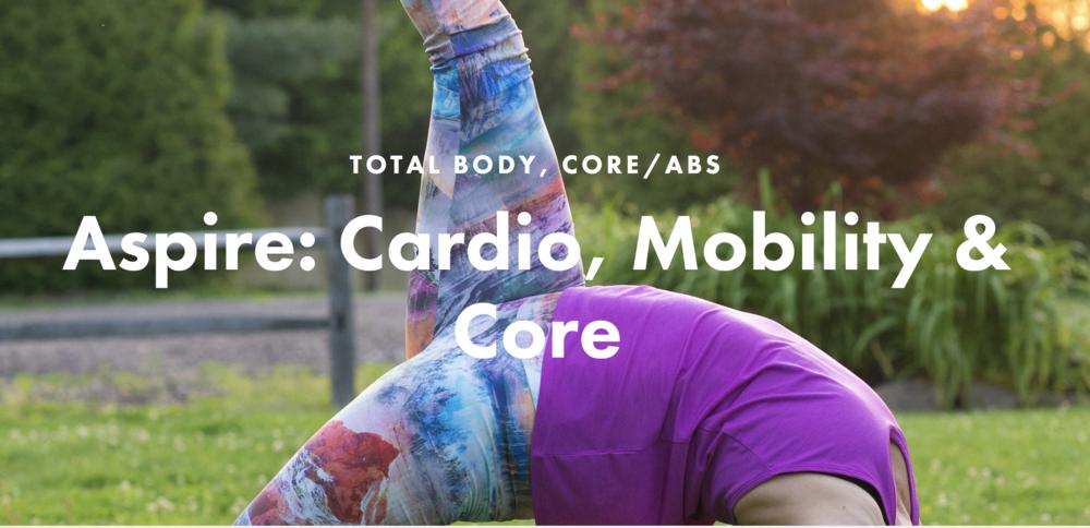 JBird Fitness Workout Video Series