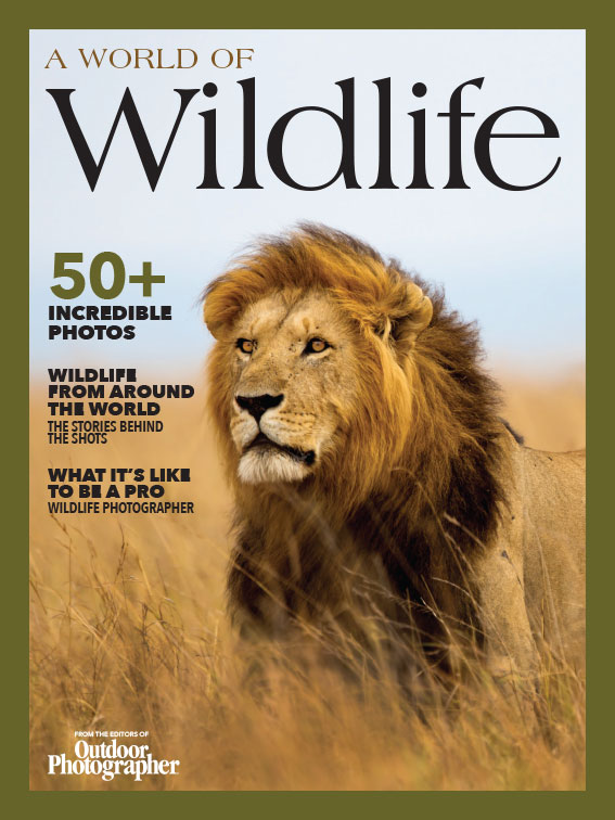 OPH-1811-Wildlife-SIP-Cover-Hi (1).jpg
