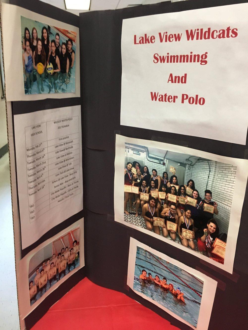 Sport - Swimming 2.jpg