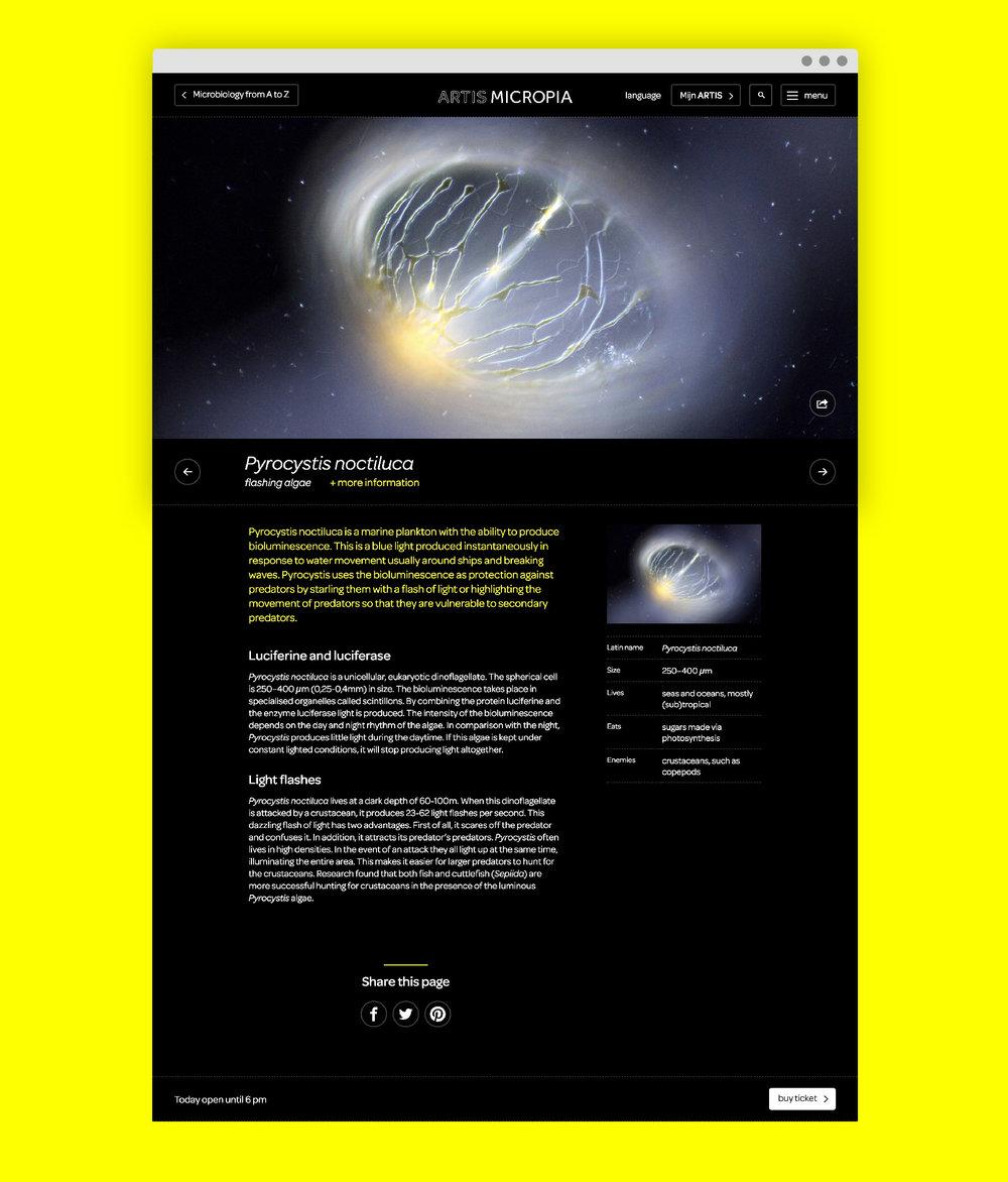 Micropia_browser-03.jpg
