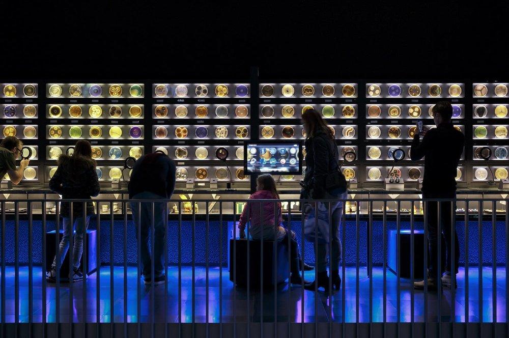 Exhibition: Kossman de Jong. Photo: Thijs Wolzak