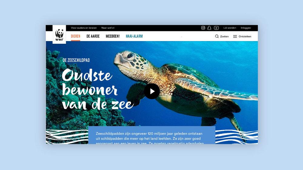 WNF_browser-02.jpg
