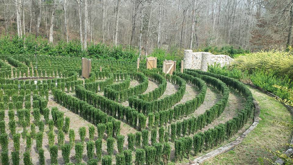 John B McLemore's incredible hedge-maze has 64 possible outcomes and one null-set. The maze is currently in disrepair and ruin which could also have been avoided with proper planning.