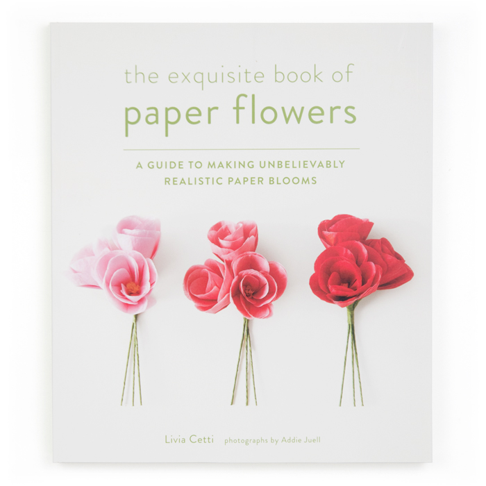 The Exquisite Book Of Paper Flowers Castle In The Air