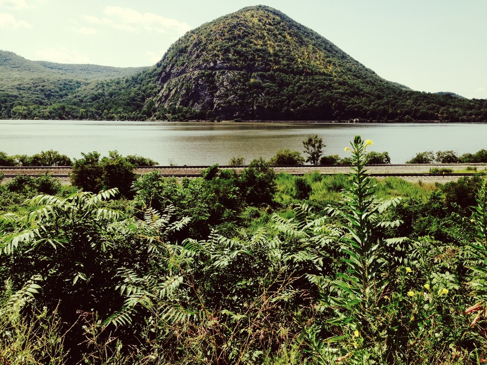 Hudson Valley in July, Beacon, NY, 2015