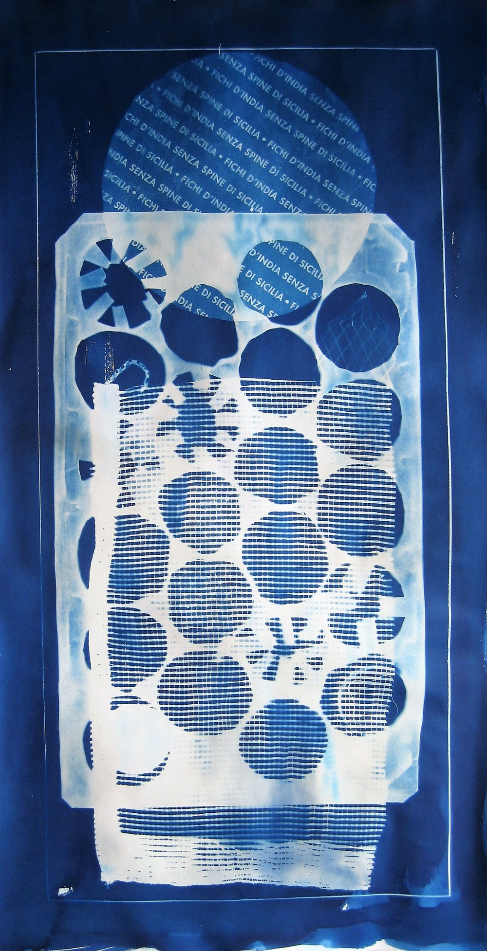 'Fichi d'India' 2018 40x77cm. cyanotype.JPG