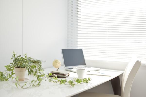 desk-plant-©-japolia-Fotolia.com_-600x400.jpg