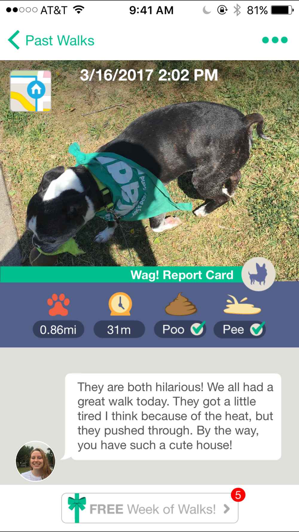 wag-walk-report-card
