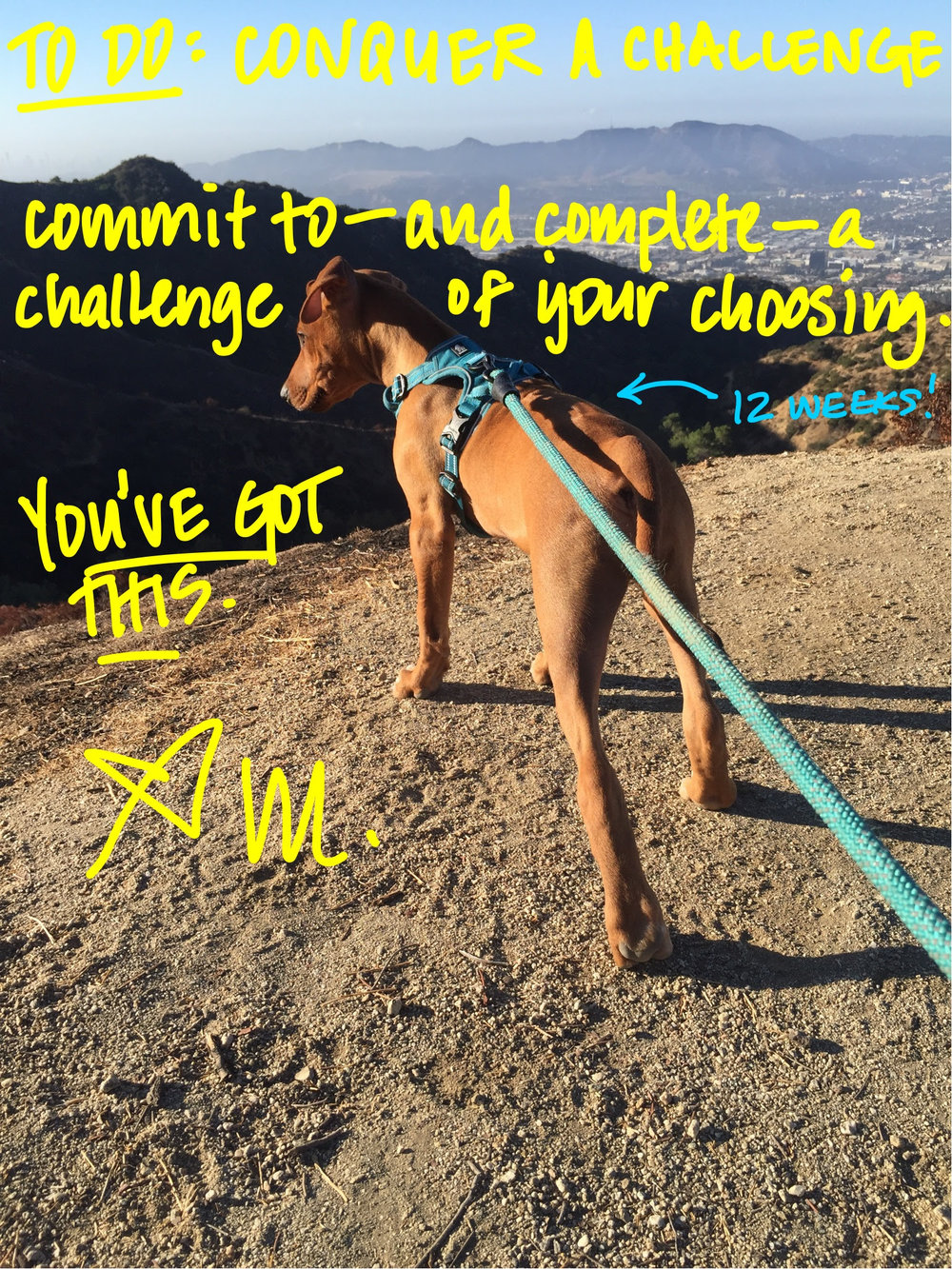 challenge-note.jpg