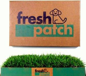 fresh-patch-potty-pad