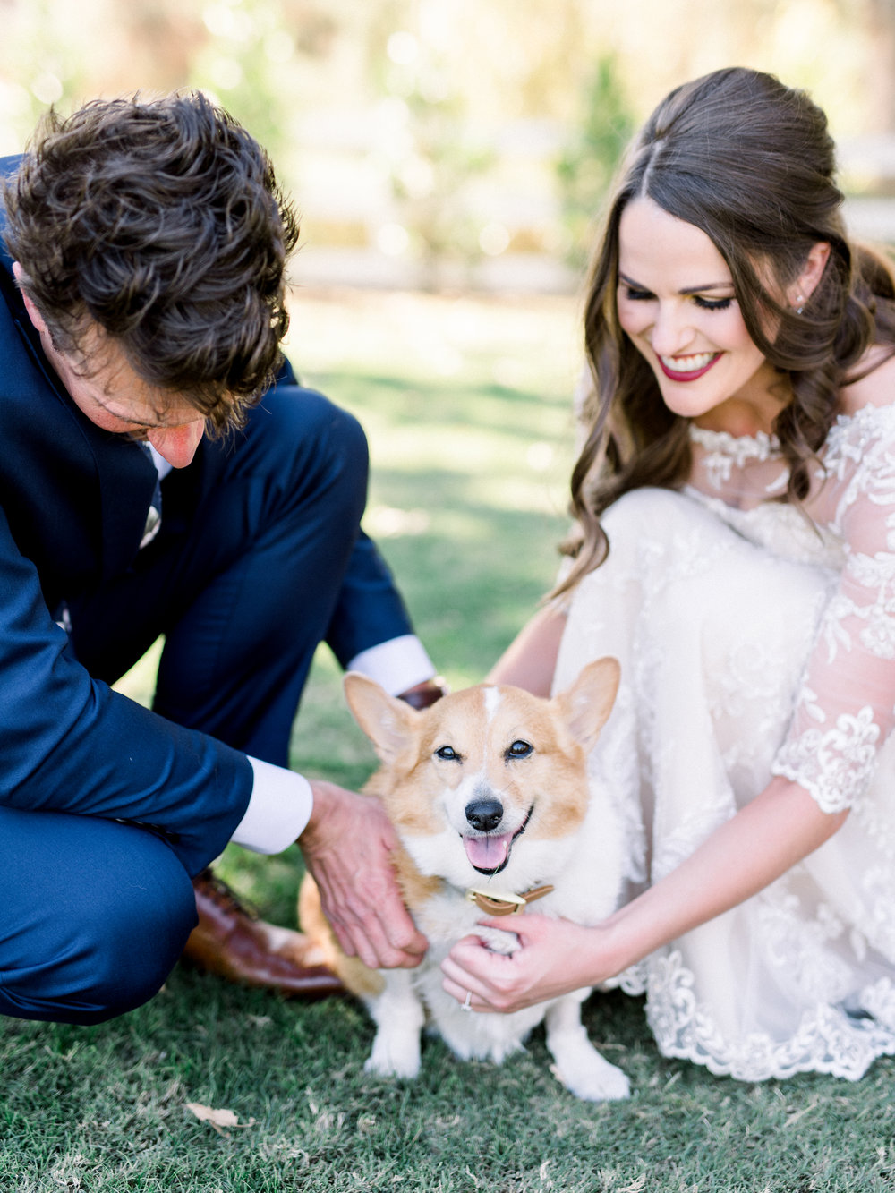 corgi wedding.JPG