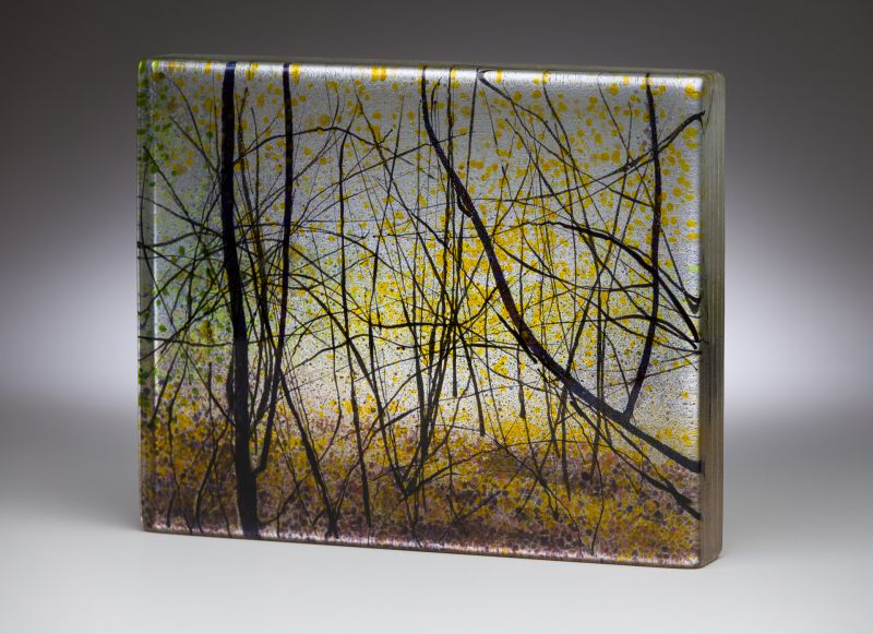 Waterstone_Angelita Surmon_small file_Oaks Bottom Tangle_8x10x1.25 inches_kiln formed glass.jpg