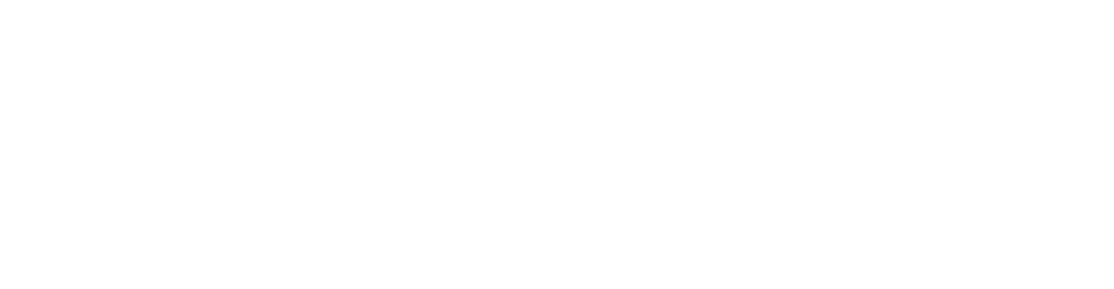 NIGHTWATCH® Logo - Horizontal - White - PNG
