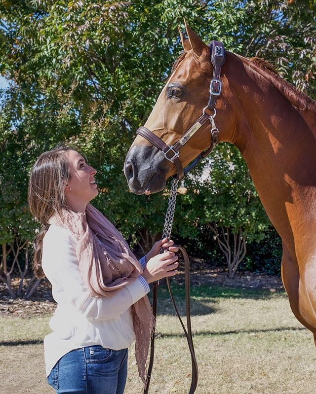 """""""l call horses 'divine mirrors' - they reflect back the emotions you put in. If you put in love and respect and kindness and curiosity, the horse will return that."""" ~Allan Hamilton"""