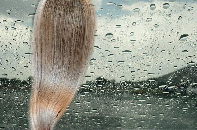 she's my cream dream . 💧🍦💧 .  #hair #harlot #melrose #melroseave #balayage #highlights #haircut #warm #summer #artist #painting #haircut #shag #cuthairlikefemale #hairbrained #creamblonde #sebastianprofessional #photography #collaging #edits #naturalbalayage #freehandpainting #prettygirl #architecture #design #texture #magma #wellaLA  #shebad #stevie〰️m