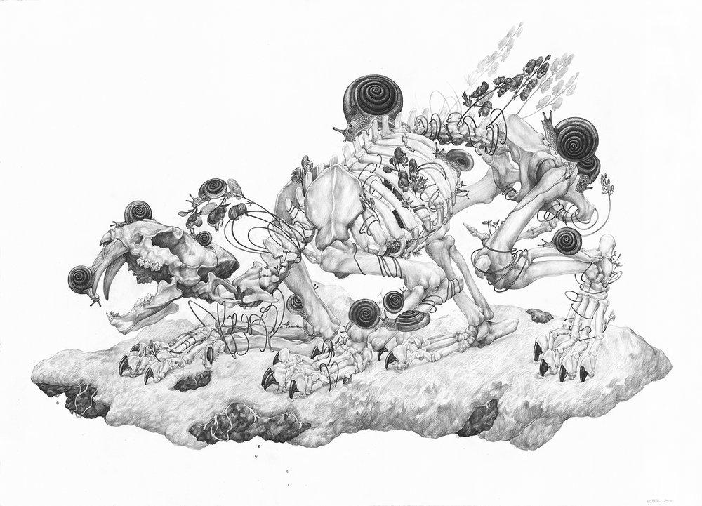 """Ледяная реликвия, графит на бумаге, 36 """"x 26"""" - Доступна для покупки через Antler Gallery"""