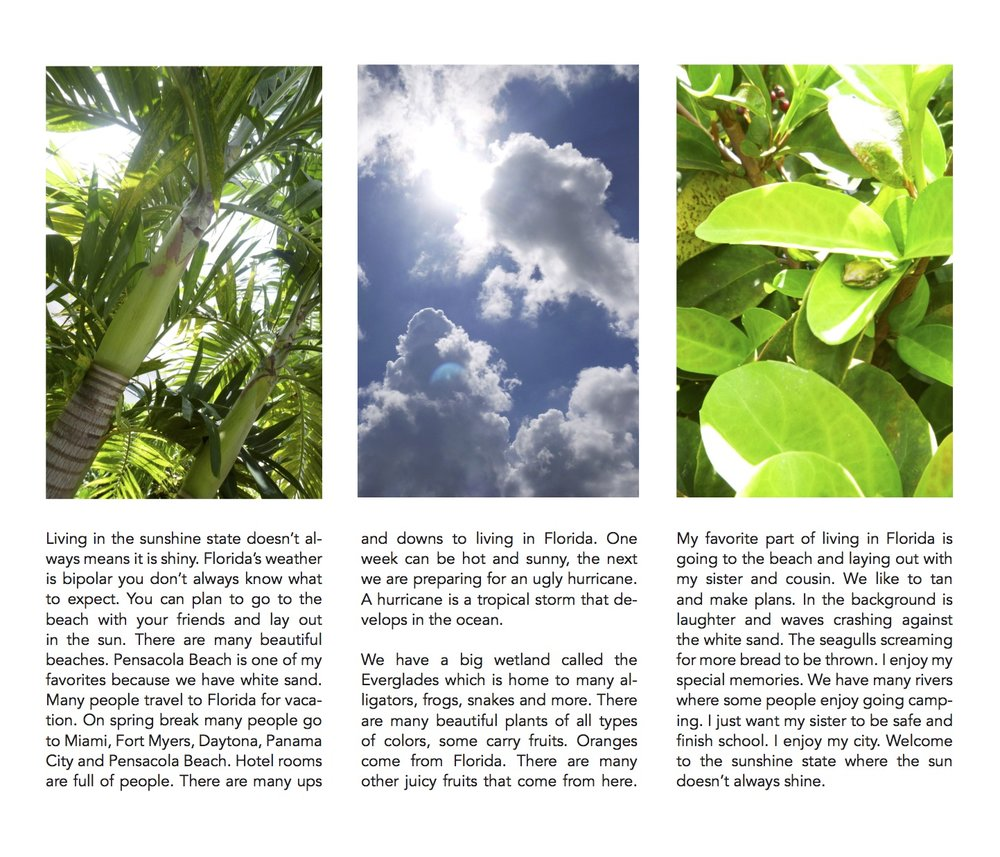 Pages from TIO MGA final Pages 3.1.18 copy.jpg