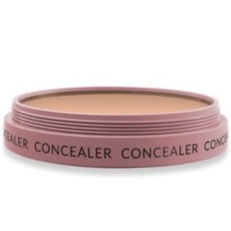 conceal.PNG