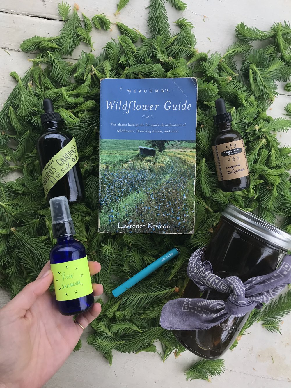 What's In My Bag with Herbalist Anja Rothe