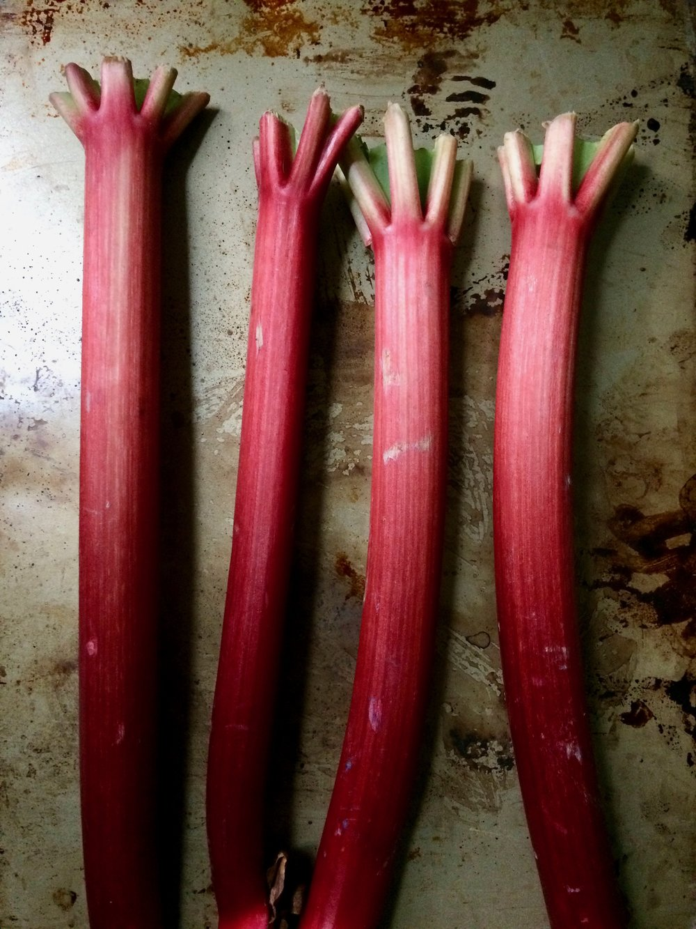 RHUBARB & STRAWBERRY SUMMER SOUP