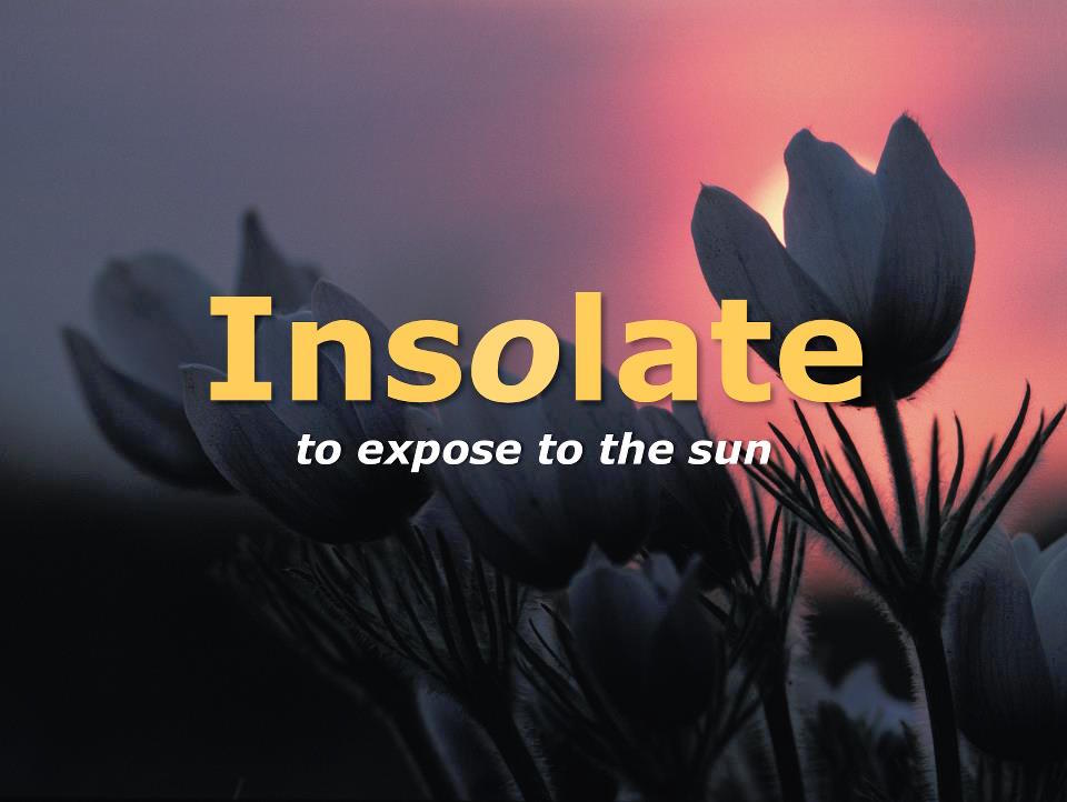 "The core principle for passive solar capture is  Insolation , which means ""to place in the sun"" or expose to the sun. Flowers teach us this lesson beautifully, opening and turning to face the source of life.  The solar energy absorbed by Earth in one hour is greater than all the energy humans currently use in a full year."