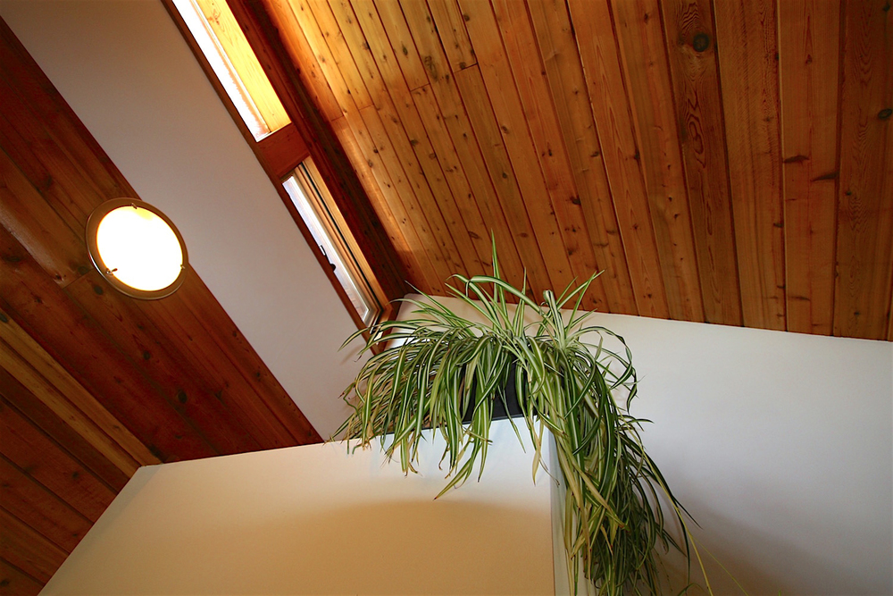 Plants  love  Solace House. The south-facing clerestory windows at the top of the house incorporate optimal shading to allow full winter sun penetration, while keeping out direct summer sunshine. The flat ceiling at the top of this  sleep-space  closet provides a great habitat for our potted friends...